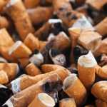 do not flush cigarette butts